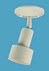 Step Bullet Shade with swivel Ceiling Mount